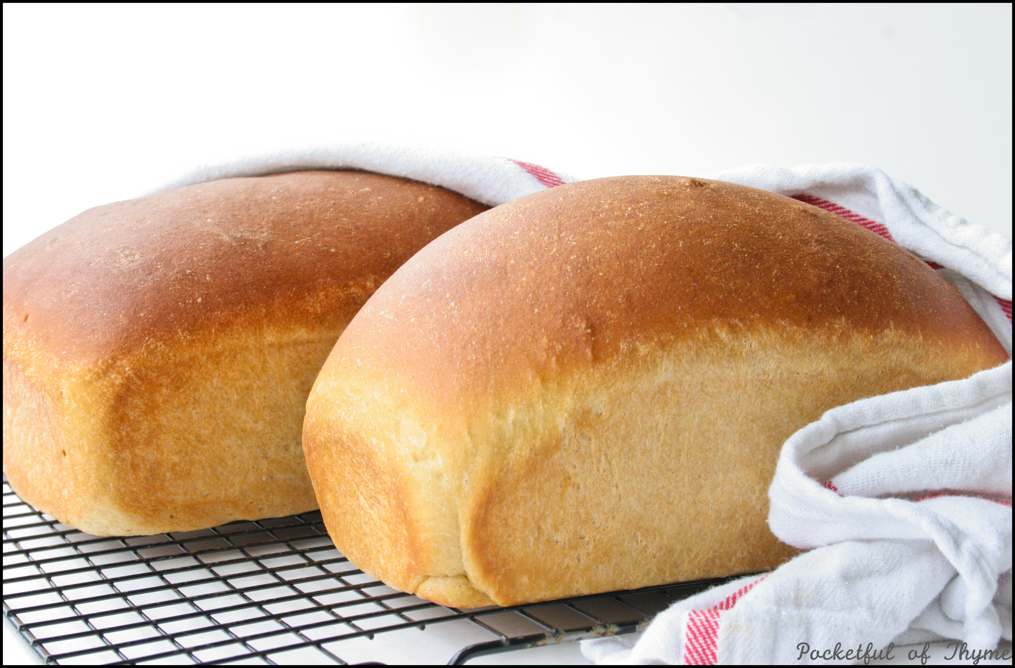 Honey Wheat Bread (video how-to included!) | Pocketful of Thyme